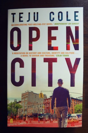 tejucole_opencity