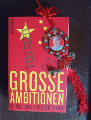 grosse_Ambitionen